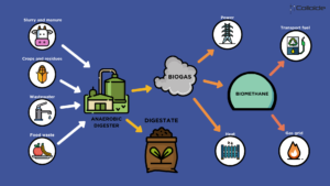 anaerobic digestion, anaerobic digester, digestate, biogas, renewable, sustainable, energy, colloide, colloide engineering systems
